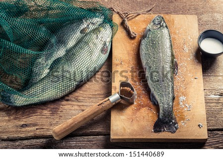 Freshly caught fish for dinner - stock photo