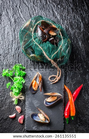 Freshly caught mussels on ice - stock photo