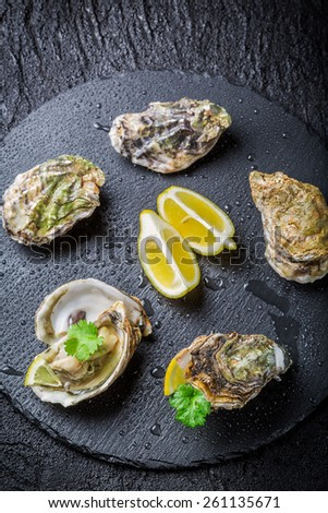 Freshly caught oyster in shell on crushed ice - stock photo