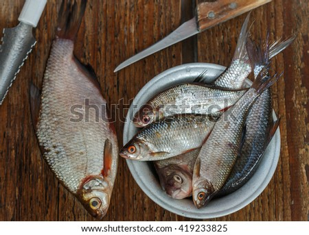 Freshly caught river fish. Selective focus