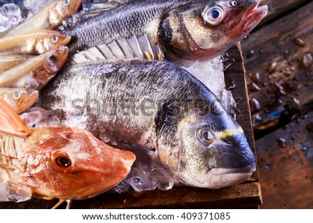 Freshly caught variety of edible saltwater fish on ice in a crate with a red gurnard, dorade, mackerel and mullet, close up view - stock photo