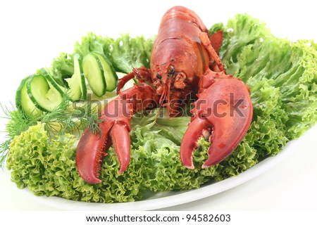 freshly cooked lobster with cucumber, lemon, lettuce and dill - stock photo
