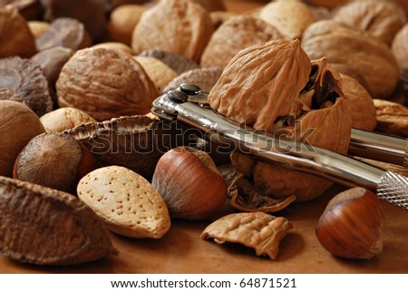 Freshly cracked walnut in nutcracker with selection of whole nuts on wood.  Macro with shallow dof. - stock photo