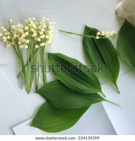 Freshly cut bouquet of lilies of the valley - stock photo