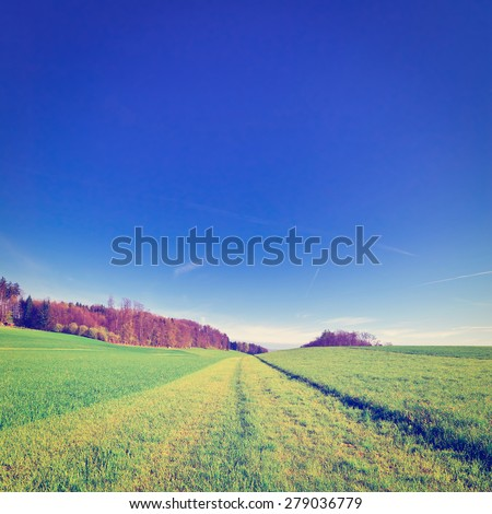 Freshly Cut Grass on a Pasture in Switzerland, Instagram Effect - stock photo