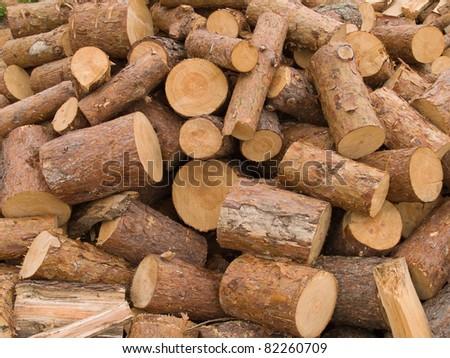 freshly cut logs - stock photo