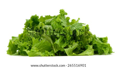 freshly green mustard salad on white background  - stock photo