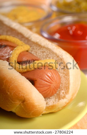 Freshly grilled hot dog with condiments - stock photo