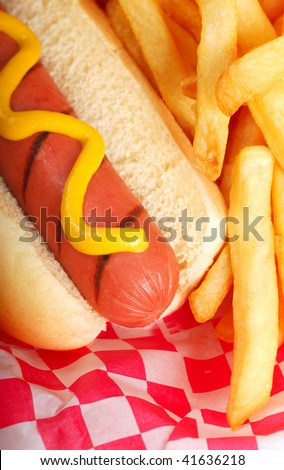 Freshly grilled hot dog with mustard and french fries - stock photo