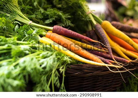 freshly harvested, colorful organic carrots in a basket at farmer's market. selective focus, horizontal, close up. - stock photo