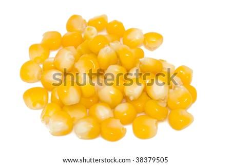 Freshly harvested corn close-up isolated on white - stock photo