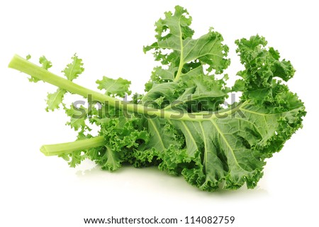 freshly harvested  kale cabbage stems on a white background - stock photo