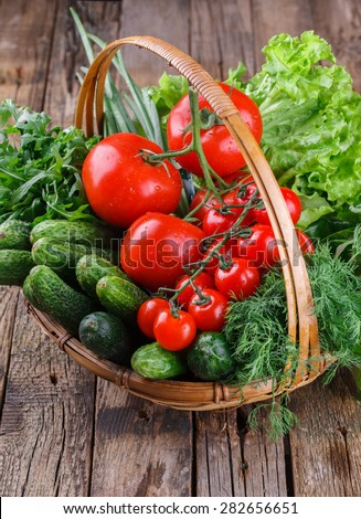 Freshly harvested organic vegetables in a basket.Tomatoes, cucumbers,cherry tomatoes, lettuce, dill,arugula. selective focus