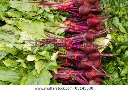 Freshly harvested red beets on display at the farmer's market - stock photo