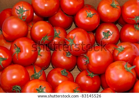 Freshly harvested red ripe tomatoes on display at the farmer's market