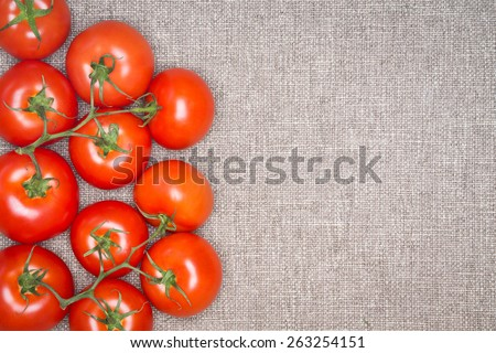 Freshly Harvested Red Ripe Tomatoes on the Vine Against Grey Textured Carpet Background with Copyspace, as seen from Above - stock photo