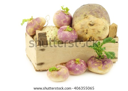 freshly harvested spring turnips (Brassica rapa) and  common turnip in a wooden crate on a white background - stock photo