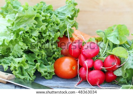 Freshly harvested vegetables with knife on a rustic background. - stock photo