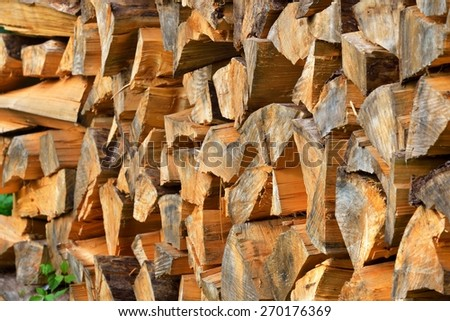freshly made firewood in the forest - stock photo