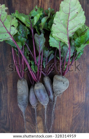 Freshly picked beetroot with green tops on wooden background. Dirt is still on the plants. Organic vegetables at a local farm. - stock photo