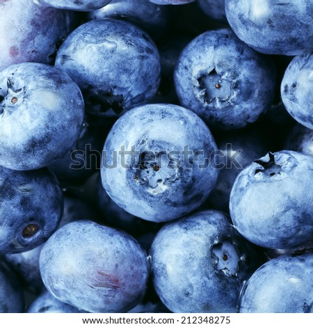 Freshly picked blueberries background - stock photo