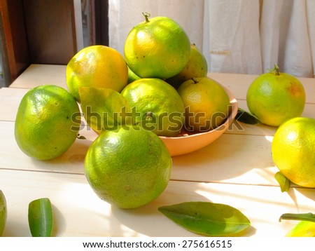 Freshly picked oranges on a sunlit table. - stock photo