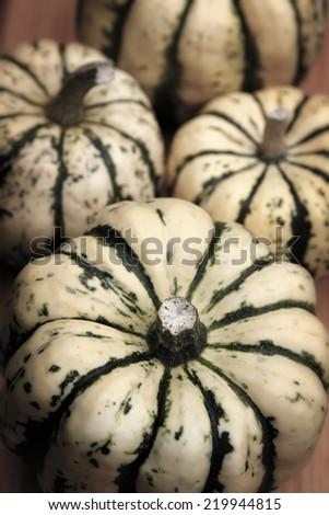 Freshly picked organic pumpkins - stock photo
