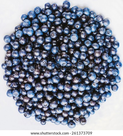 Freshly picked pile of blueberries - stock photo