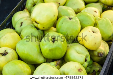 Freshly picked quince fruits at the farmers market