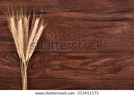 Freshly picked spikelets wheat on a brown wooden background