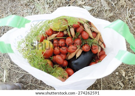 Freshly picked vegatables in a bag - stock photo
