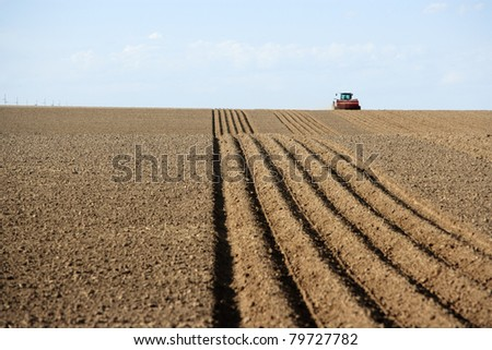 Freshly planted rows in a farm field - stock photo