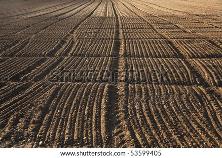 freshly ploughed acre in beautiful light