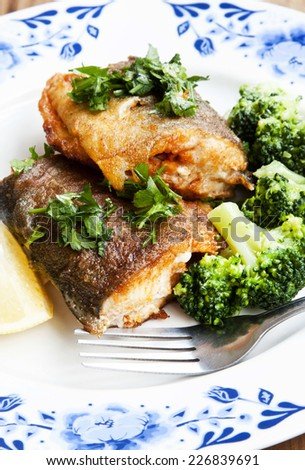 Freshly Prepared Trout Fish with Broccoli and Parsley Garnish - stock photo