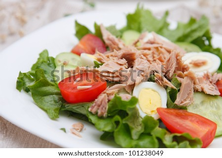 Freshly prepared tuna and egg salad - stock photo