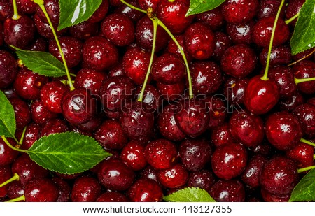Freshly red cherry berries with water droplets. Healthy food background - stock photo