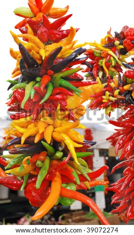 Freshly strung registrar with assorted colored chili - Photo taken at the Harvest festival in Seattle, WA - stock photo