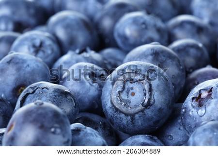 freshly washed blueberries close up photo, organic food - stock photo