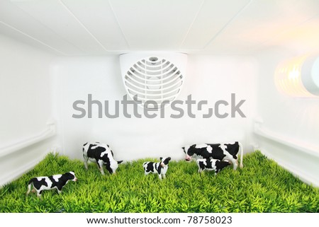 Freshness concept - stock photo