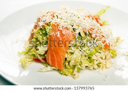 Freshness Salmon Salad - stock photo