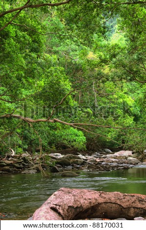 Freshwater Creek, Redlynch Valley, Tropical North Queensland, Australia - stock photo