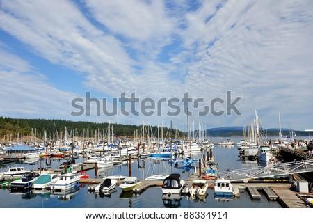 Friday Harbor and marina - stock photo