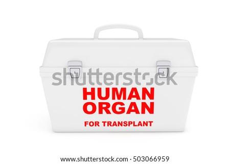 Fridge Box Transporting Human Donor Organs Stock