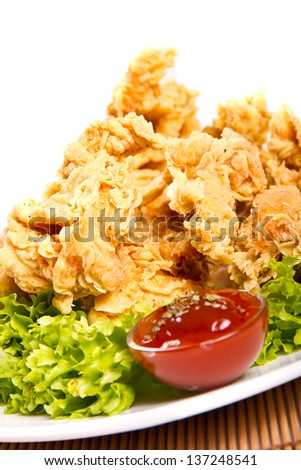Fried chicken breast strips on a plate - stock photo
