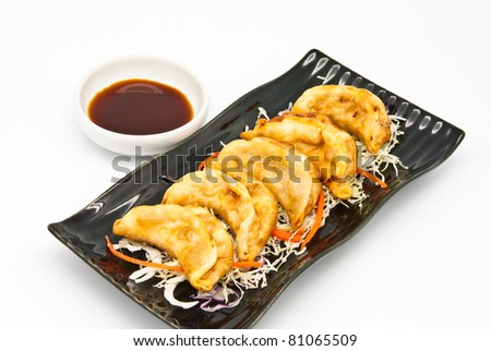 Fried Dumplings Chinese Style Cuisine in the plate - stock photo