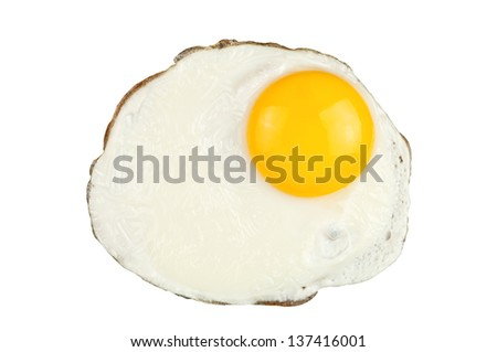 fried egg on white background