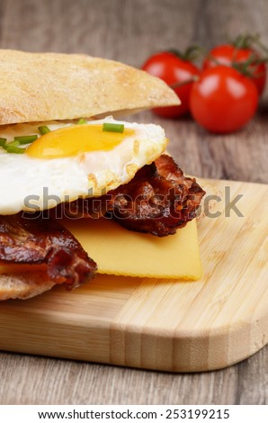 Fried egg sandwich with bacon and cheese - stock photo