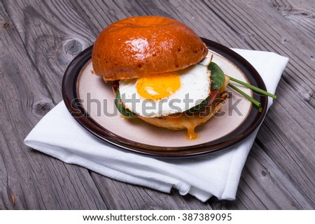 Fried egg sandwich with double cheese drip.