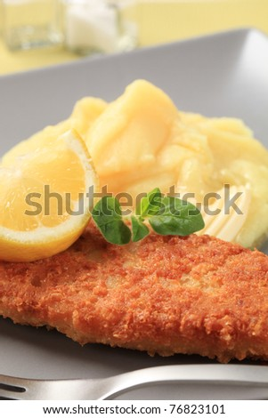 Fried fish fillet and mashed potato - stock photo