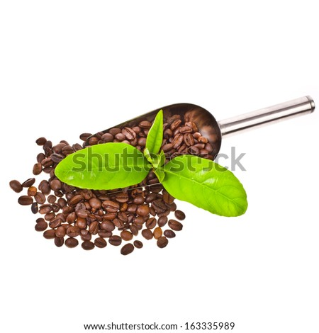 fried grains of black coffee in a steel scoop decorated with green leaves isolated on white background - stock photo